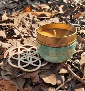 Forest Bathing - Rainforests of the Atsinanana - Pure beeswax hand poured candle (essential oil scented)