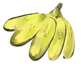 Local Organic Plantain Banana
