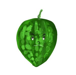 Local Organic Big Bitter Melon
