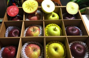 Organic Highland Special Species Apples Boxset