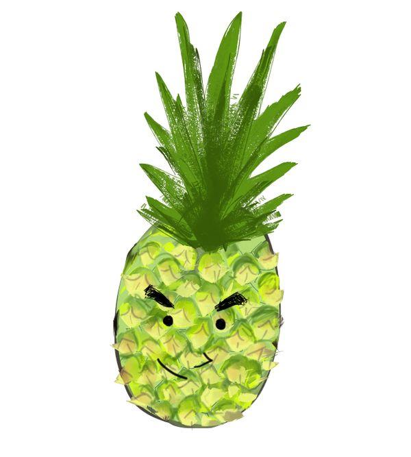 新界有機菠蘿
