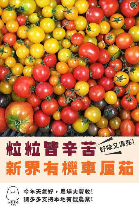 Local Organic Cherry Tomatoes