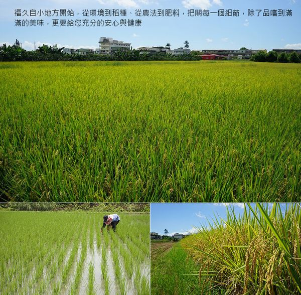 Organic Pearl Rice from East Taiwan(White)