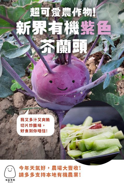 新界有機紫色芥蘭頭